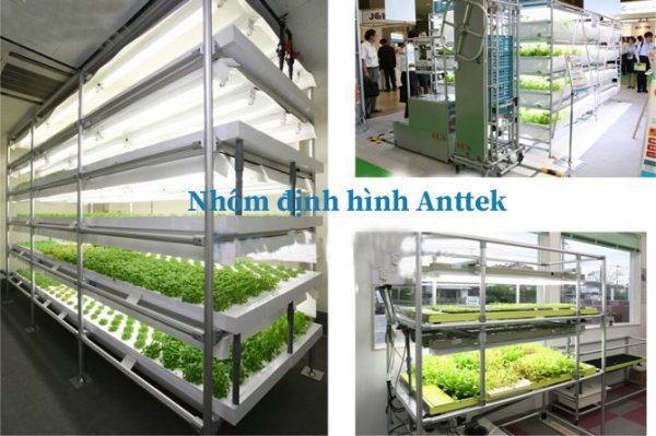 Giá trồng rau nhôm định hình
